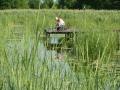 Rybak na kładce nad jeziorem Selmęt Wielki